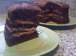 Slice of chocolate fudge gateau with chocolate cream